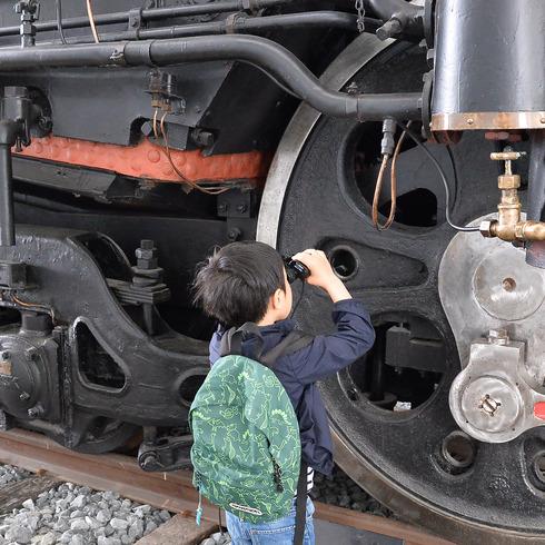 恐竜博物館と鉄道博物館_f0099102_1141938.jpg
