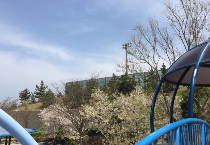 春らしい七塚中央公園!_f0170422_21553671.jpg