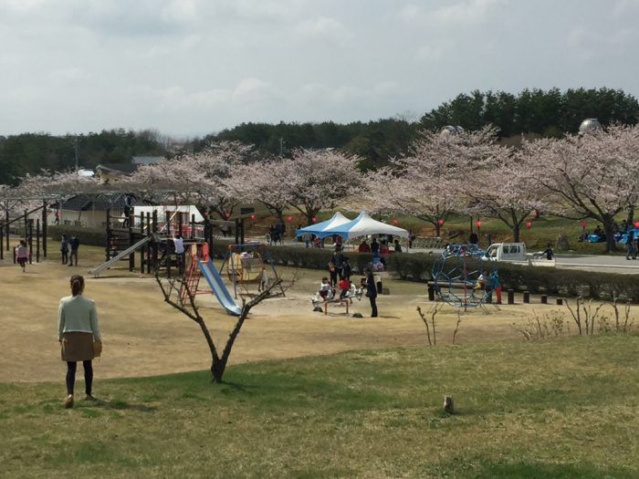 桜🌸_a0156636_19411498.jpg