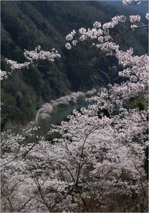 三休(みやすみ)公園_a0256349_11453970.jpg