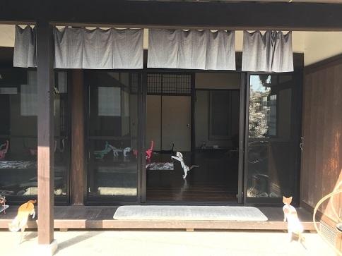 4月16日直島「ギャラリー嶋屋 猫展」_c0227958_16484765.jpg