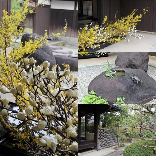 ◆最後の桜・・「行き行きて 行きて花」いけばな二人展  豊中 桜の庄兵衛ギャラリー_e0154682_17204522.jpg