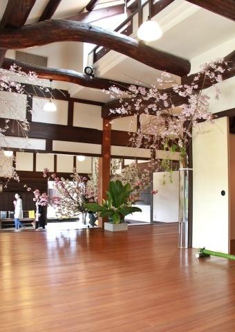 ◆最後の桜・・「行き行きて 行きて花」いけばな二人展  豊中 桜の庄兵衛ギャラリー_e0154682_17483147.jpg
