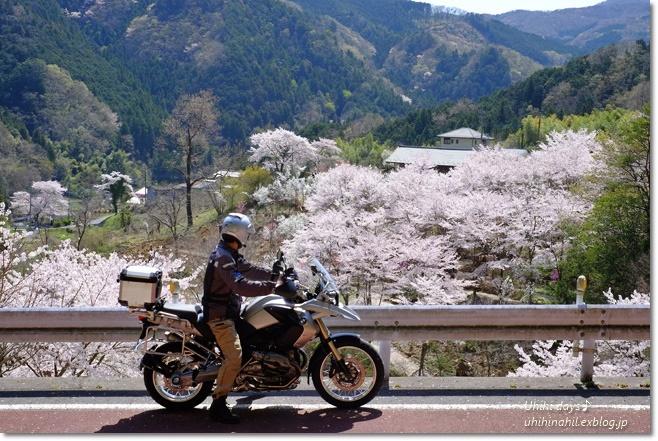 秩父 かき氷と桜ツーリング♪_f0179404_22100152.jpg