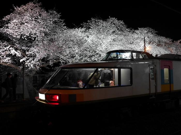 えちご分水夜桜号_e0169421_21442662.jpg