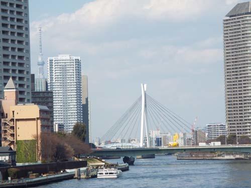 ぐるっとパスNo.13・14 芭蕉記念館と江戸東京博まで見たこと_f0211178_16413071.jpg