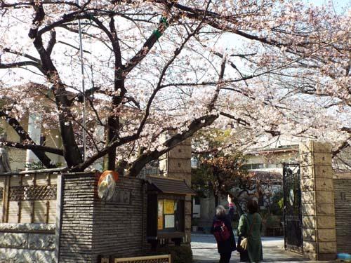 ぐるっとパスNo.13・14 芭蕉記念館と江戸東京博まで見たこと_f0211178_16421580.jpg