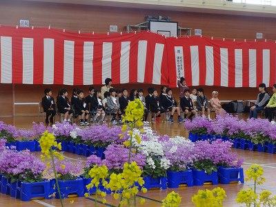 子ども園入園式   KJ高校入学式  浦佐小・大和中学入学式_b0092684_1524978.jpg