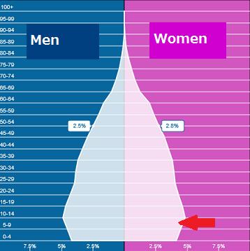 ミャンマー人女性の未婚率が高すぎる_b0355085_23160470.png