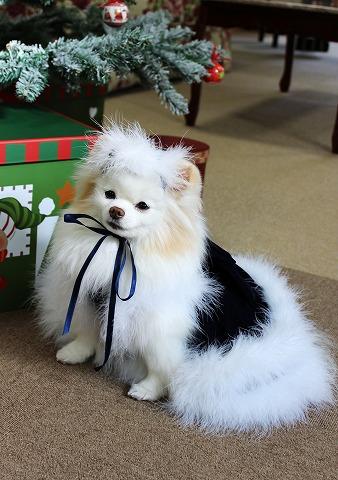 クリスマスの一部始終_d0360206_12382022.jpg