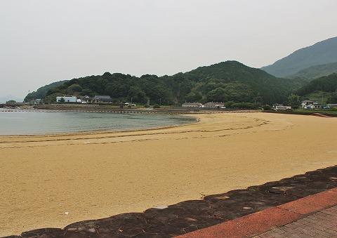 人気の海水浴場_d0360206_12462962.jpg