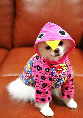 雨の日にはファッションショー_d0360206_12534118.jpg