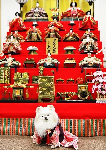 雛祭り@2015_d0360206_12584249.jpg