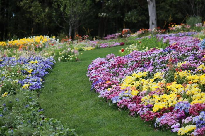 【里山ガーデン - 1 -】_f0348831_19002068.jpg
