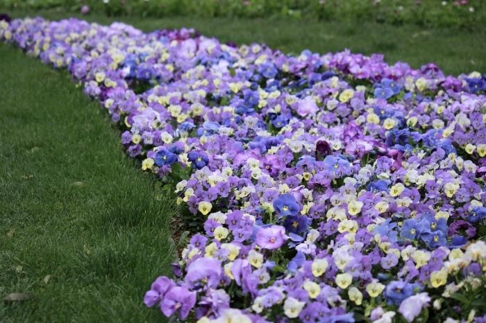 【里山ガーデン - 1 -】_f0348831_19003088.jpg