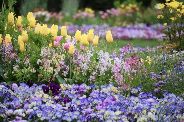 【里山ガーデン - 1 -】_f0348831_19010395.jpg