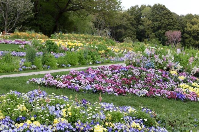 【里山ガーデン - 1 -】_f0348831_19011411.jpg