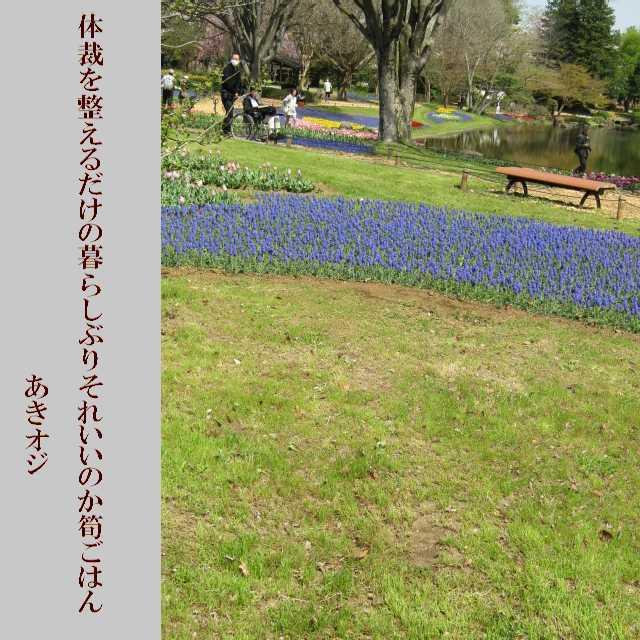 f0117041_15290355.jpg