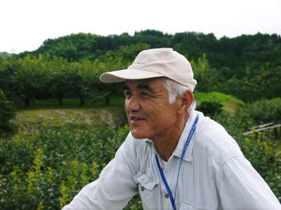 熊本梨 岩永農園 気温の上昇と共に、まずは最後に収穫する新高の花が咲き誇っていました_a0254656_18464344.jpg
