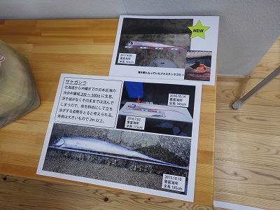 ★重富海岸自然ふれあい館(錦江湾奥)に行ってきました_e0046474_16235546.jpg
