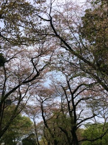 ぶらり横浜 その19 弘明寺散歩 その5_e0021092_10312776.jpg