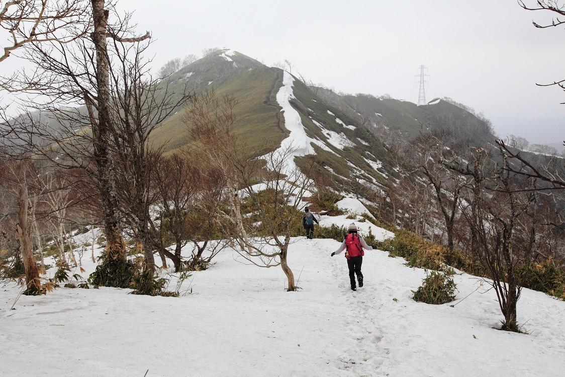 伊達紋別岳、2017.4.16-同行者からの写真-_f0138096_19511110.jpg