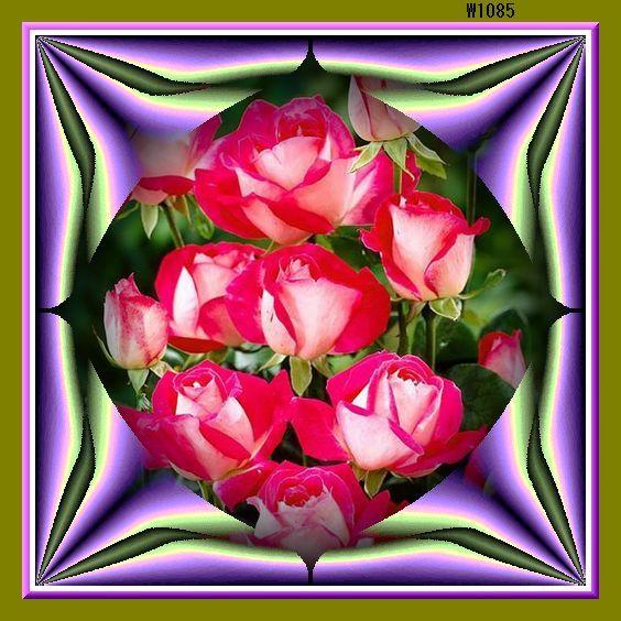 f0132006_16020309.jpg
