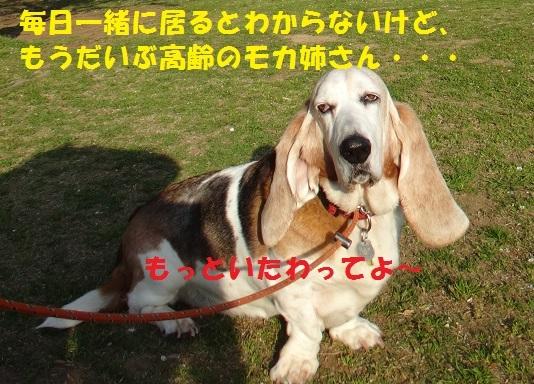 f0121712_09055586.jpg