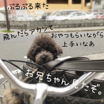 f0322570_17403406.jpg