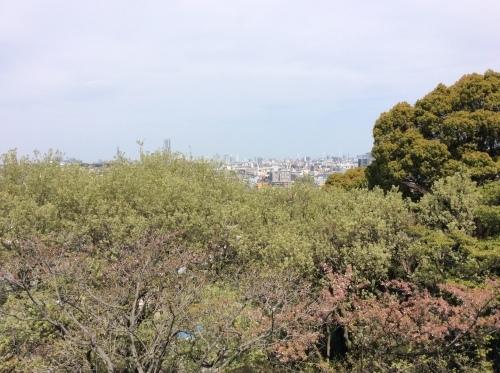 ぶらり横浜 その20 弘明寺散歩 その6_e0021092_10574028.jpg