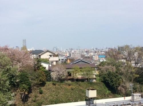 ぶらり横浜 その20 弘明寺散歩 その6_e0021092_11024380.jpg