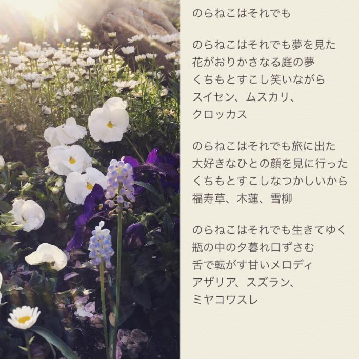 b0072051_09210887.jpg