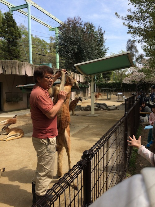 東山動物園 その1_f0324766_14320482.jpg