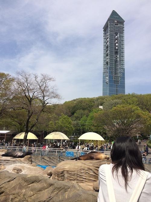 東山動物園 その1_f0324766_14341050.jpg