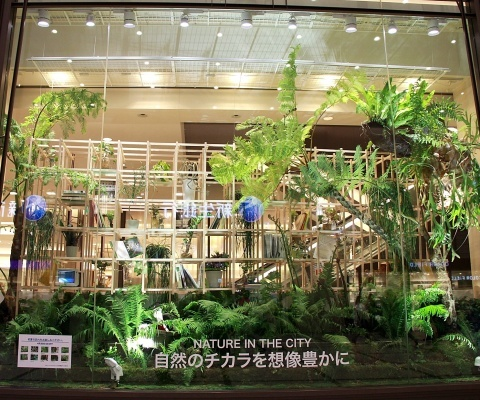 ◆『NATURE IN THE CITY』・・阪急百貨店のショーウインドウ_e0154682_00404121.jpg