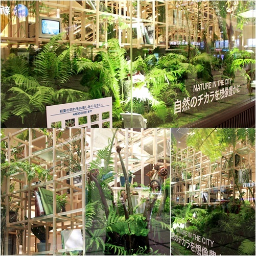 ◆『NATURE IN THE CITY』・・阪急百貨店のショーウインドウ_e0154682_00404932.jpg