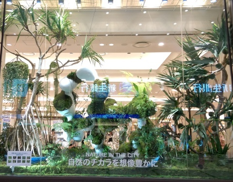 ◆『NATURE IN THE CITY』・・阪急百貨店のショーウインドウ_e0154682_00411669.jpg