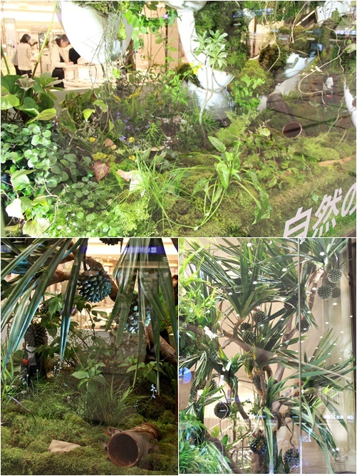 ◆『NATURE IN THE CITY』・・阪急百貨店のショーウインドウ_e0154682_00412830.jpg