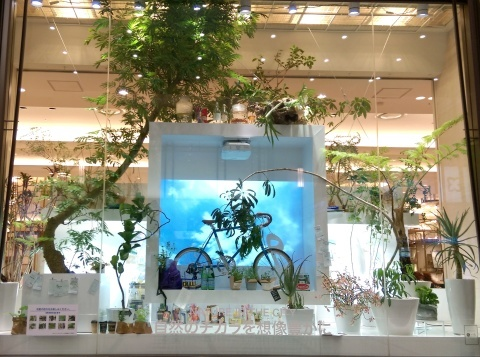 ◆『NATURE IN THE CITY』・・阪急百貨店のショーウインドウ_e0154682_00415855.jpg