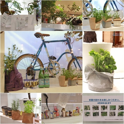 ◆『NATURE IN THE CITY』・・阪急百貨店のショーウインドウ_e0154682_00421001.jpg