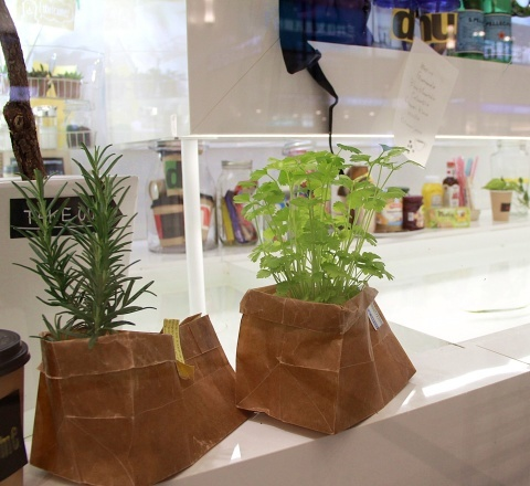 ◆『NATURE IN THE CITY』・・阪急百貨店のショーウインドウ_e0154682_00422346.jpg
