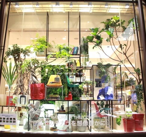 ◆『NATURE IN THE CITY』・・阪急百貨店のショーウインドウ_e0154682_00424611.jpg