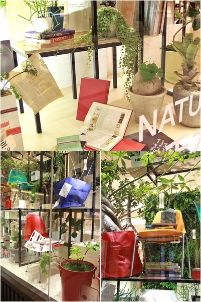 ◆『NATURE IN THE CITY』・・阪急百貨店のショーウインドウ_e0154682_00425860.jpg