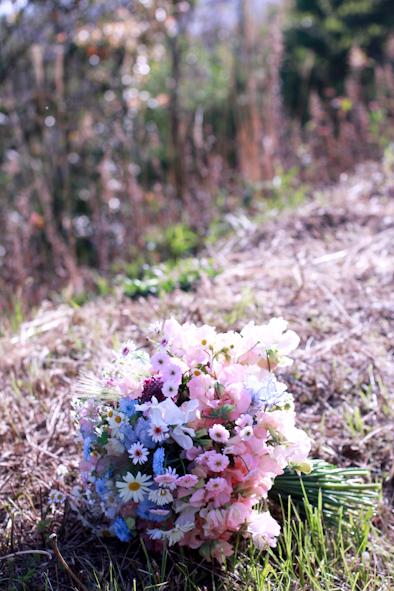 スイトピー花摘み会_b0208604_11060823.jpg
