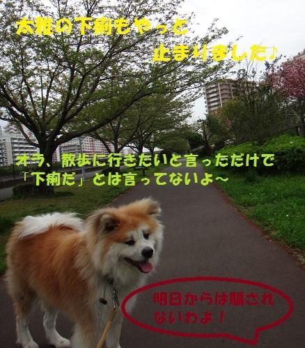 f0121712_01461164.jpg