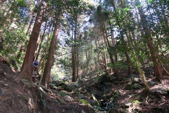 犬と一緒に山登り・宝篋山/茨城県_e0234741_22150239.jpg