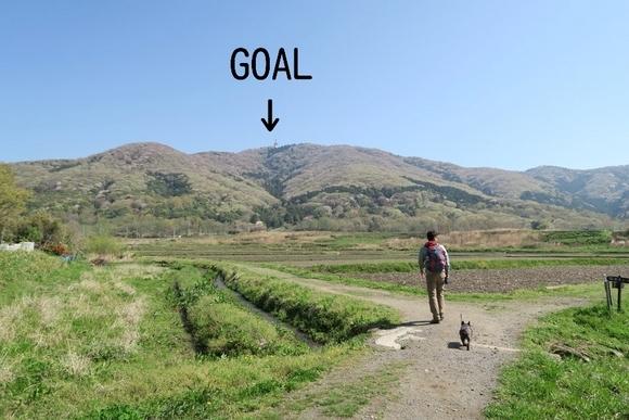 犬と一緒に山登り・宝篋山/茨城県_e0234741_22150335.jpg