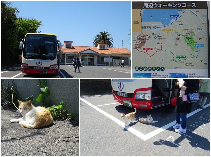 阪急交通社さんで房総半島旅へ♪_b0236665_06292421.jpg