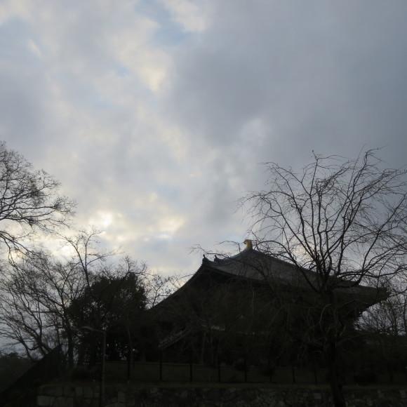 東大寺の思い出フォトグラフ_c0001670_14170711.jpg