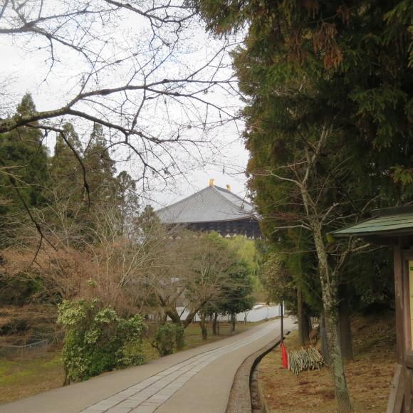 東大寺の思い出フォトグラフ_c0001670_14171893.jpg
